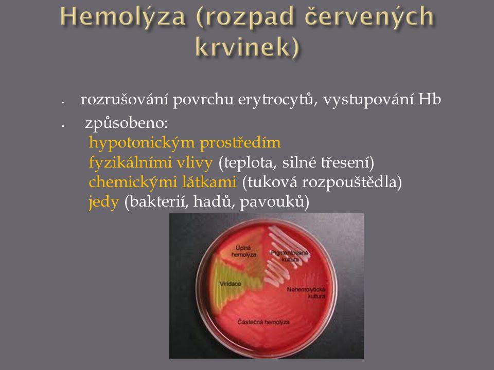 Hemolýza (rozpad červených krvinek)