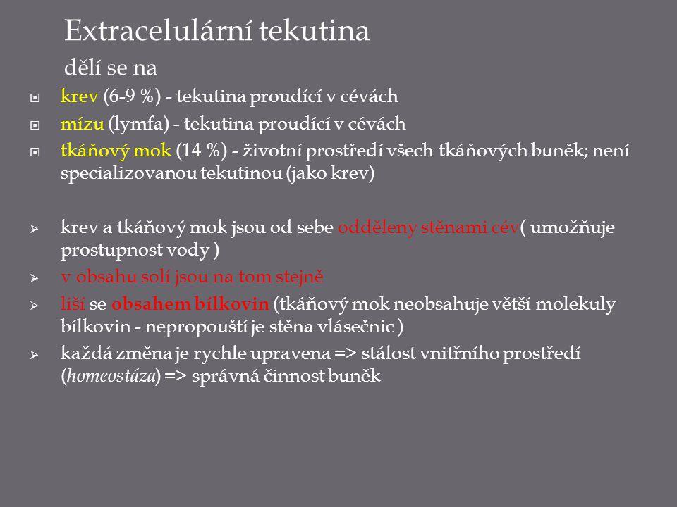 Extracelulární tekutina