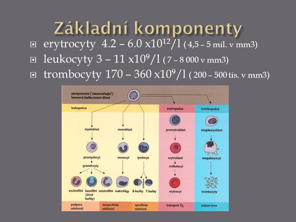 Základní komponenty erytrocyty 4.2 – 6.0 x1012/l ( 4,5 – 5 mil. v mm3)