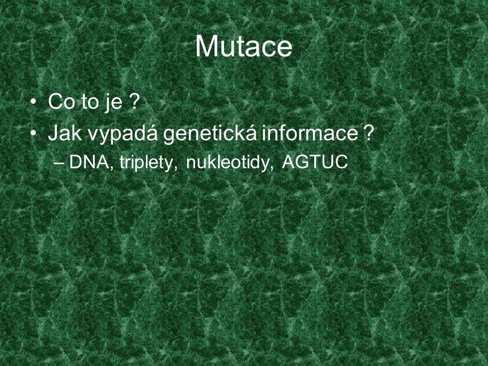 Mutace Co to je Jak vypadá genetická informace