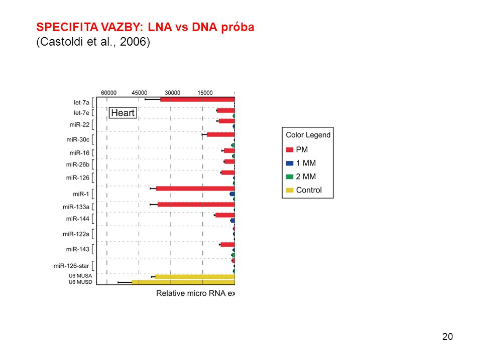 SPECIFITA VAZBY: LNA vs DNA próba