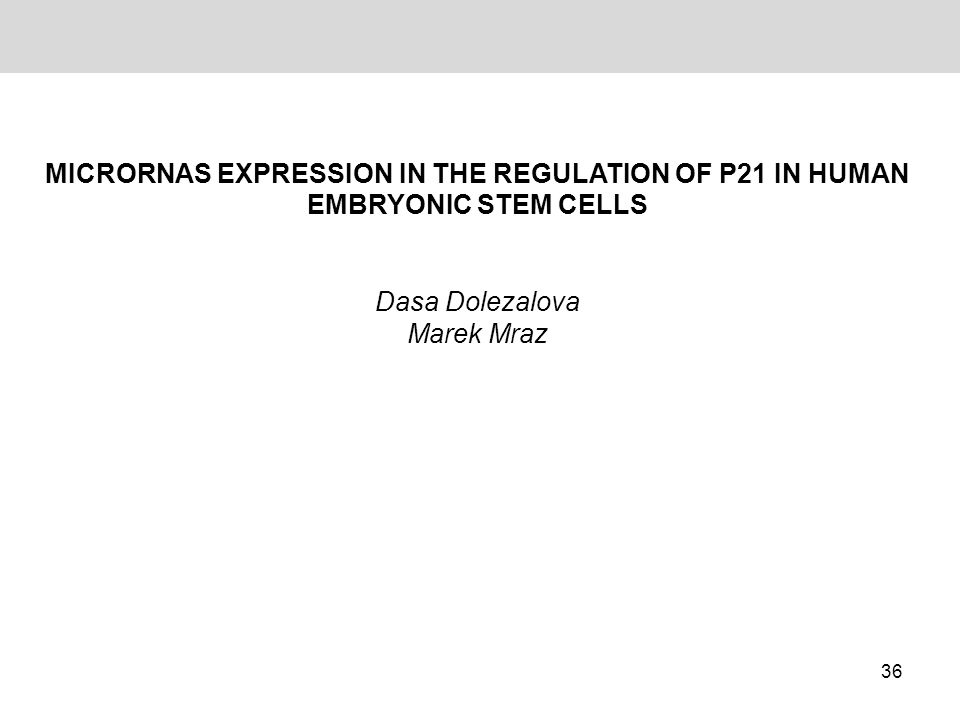 MicroRNAs expression in the regulation of p21 in human embryonic stem cells