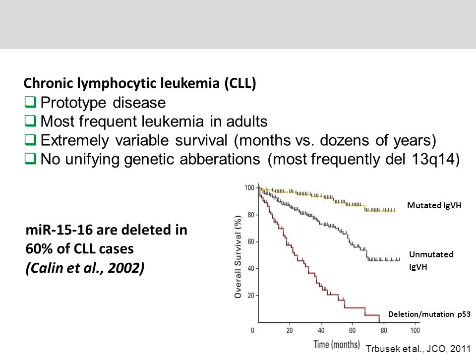 Chronic lymphocytic leukemia (CLL) Prototype disease