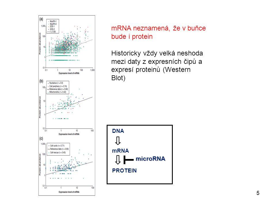 mRNA neznamená, že v buňce bude i protein