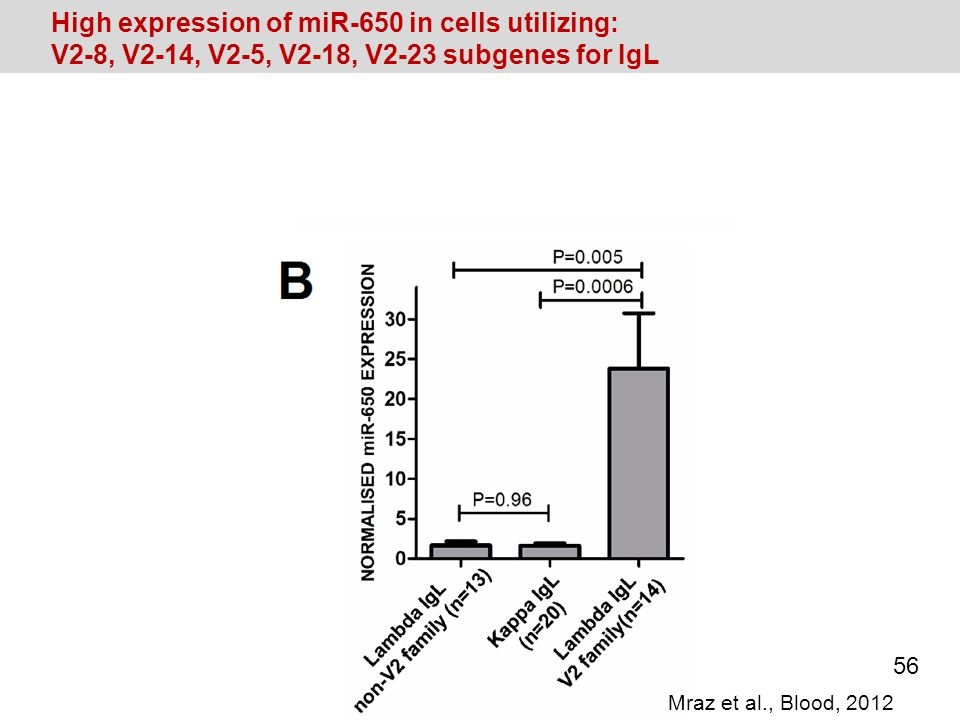 High expression of miR-650 in cells utilizing: