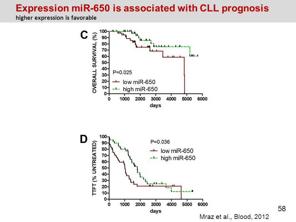 Expression miR-650 is associated with CLL prognosis