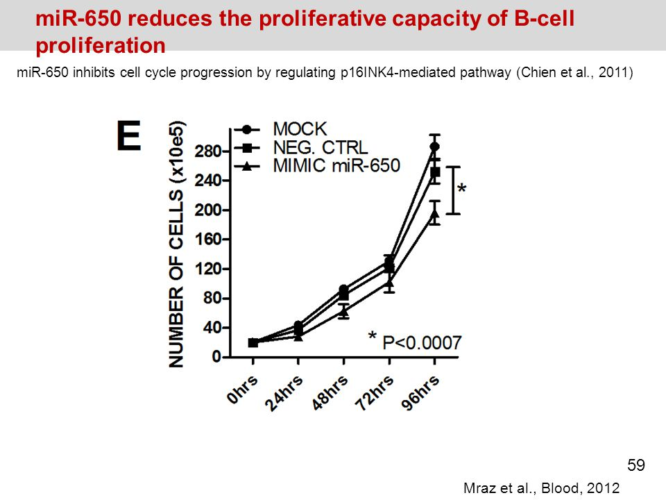 miR-650 reduces the proliferative capacity of B-cell proliferation