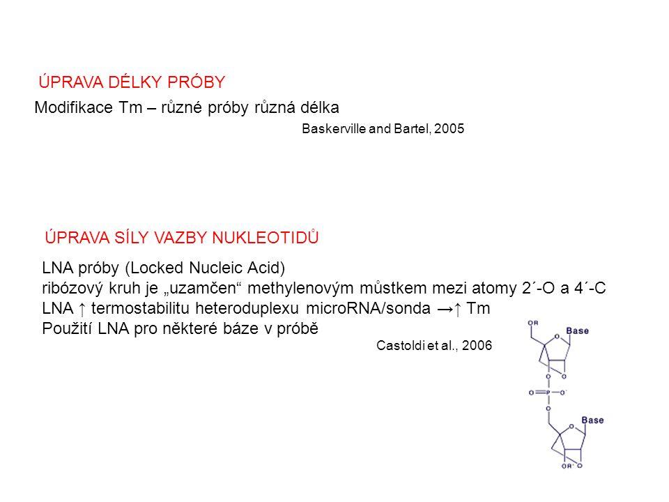 Modifikace Tm – různé próby různá délka Baskerville and Bartel, 2005