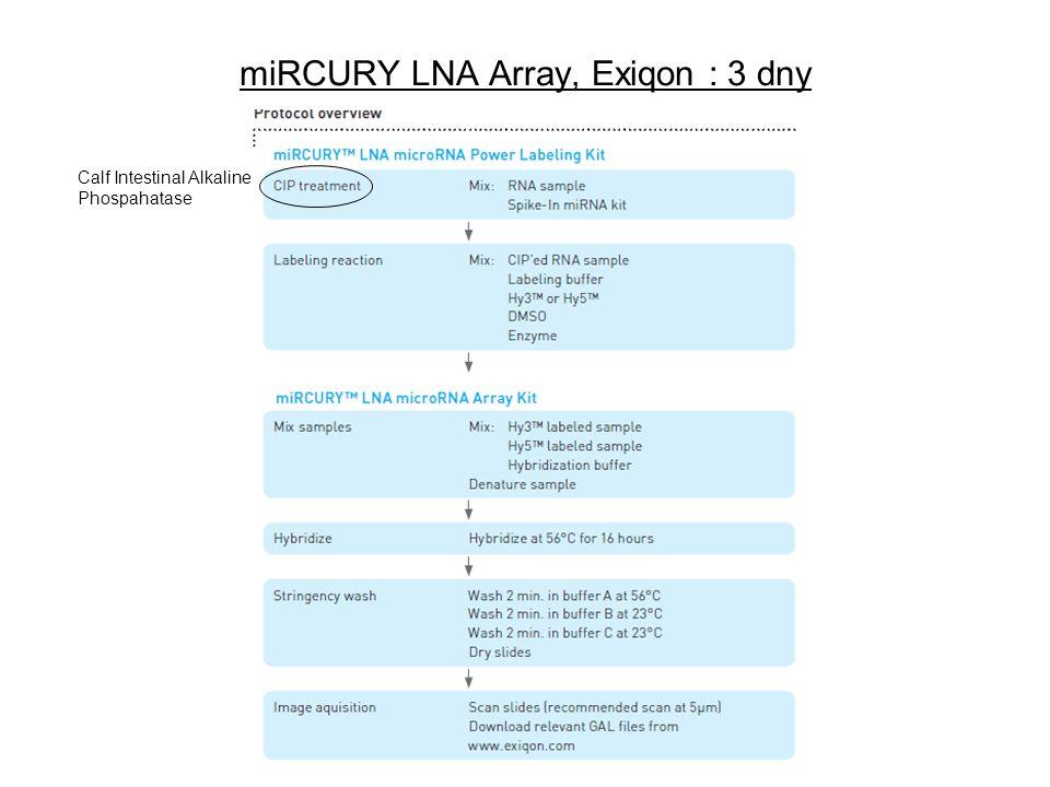 miRCURY LNA Array, Exiqon : 3 dny