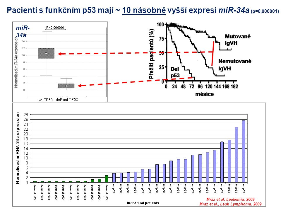 Mraz et al., Leuk Lymphoma, 2009