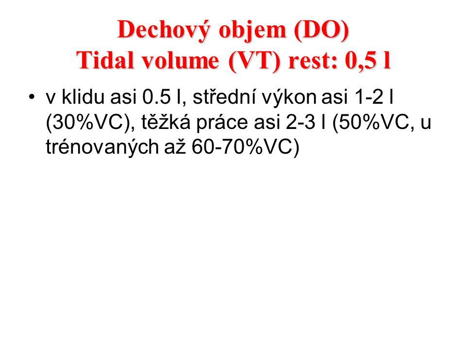 Dechový objem (DO) Tidal volume (VT) rest: 0,5 l