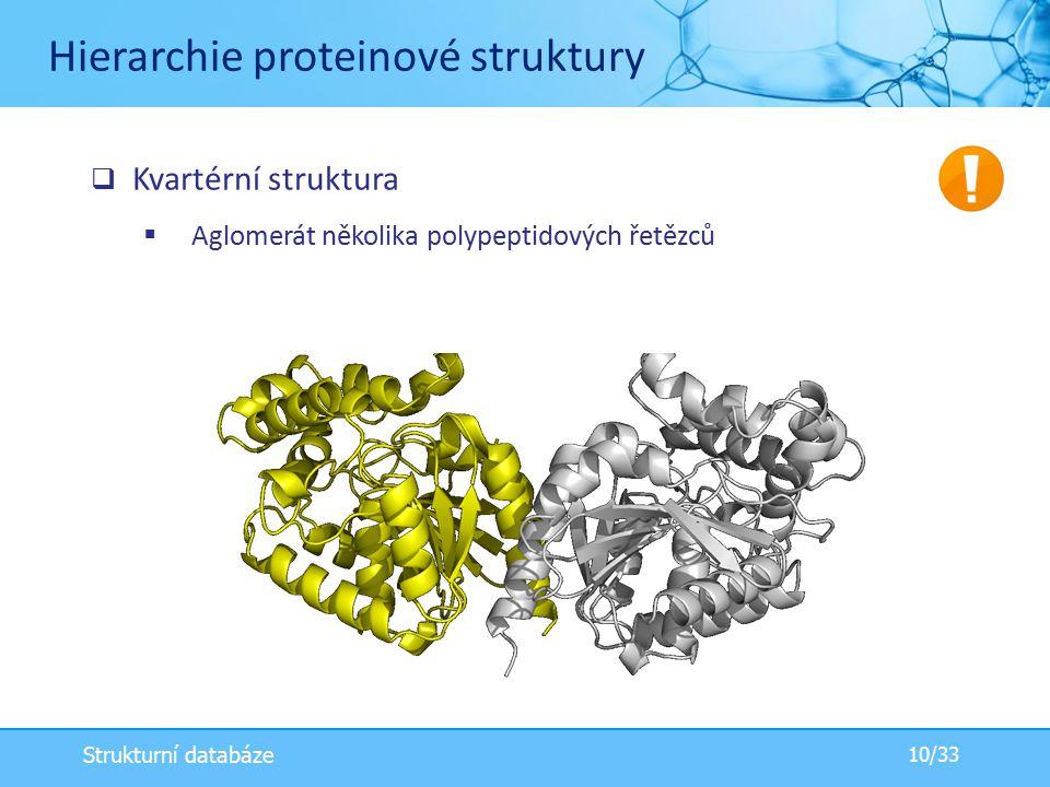 Hierarchie proteinové struktury