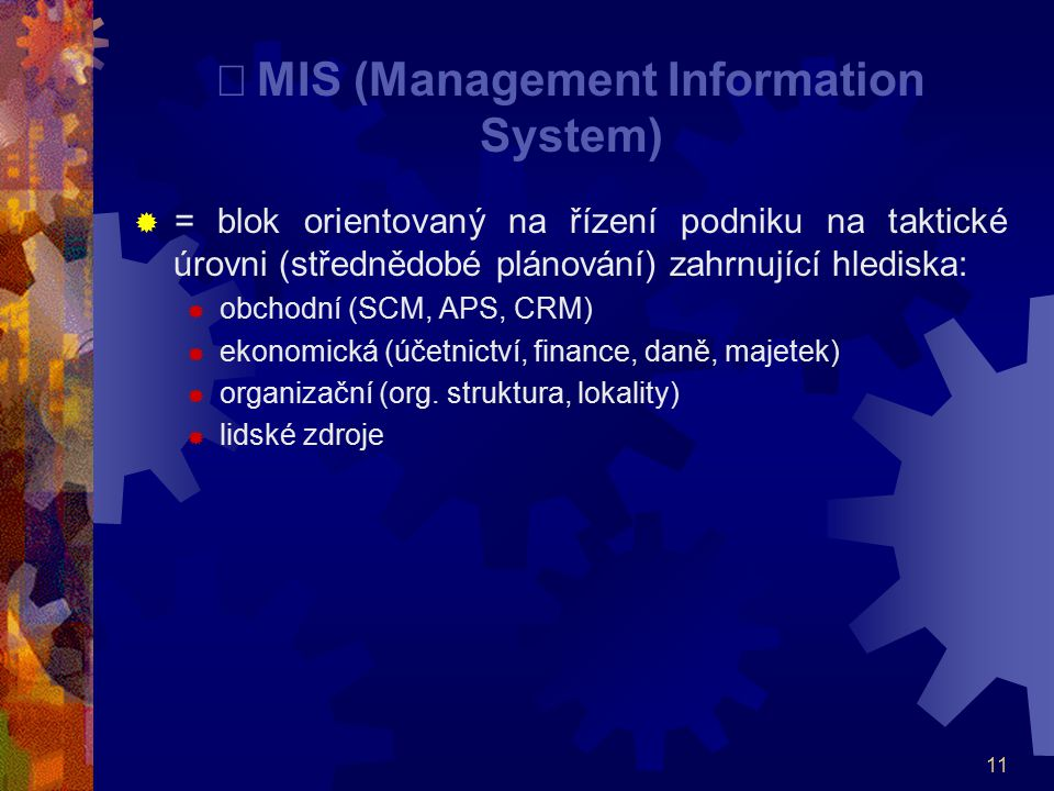 ¨ MIS (Management Information System)