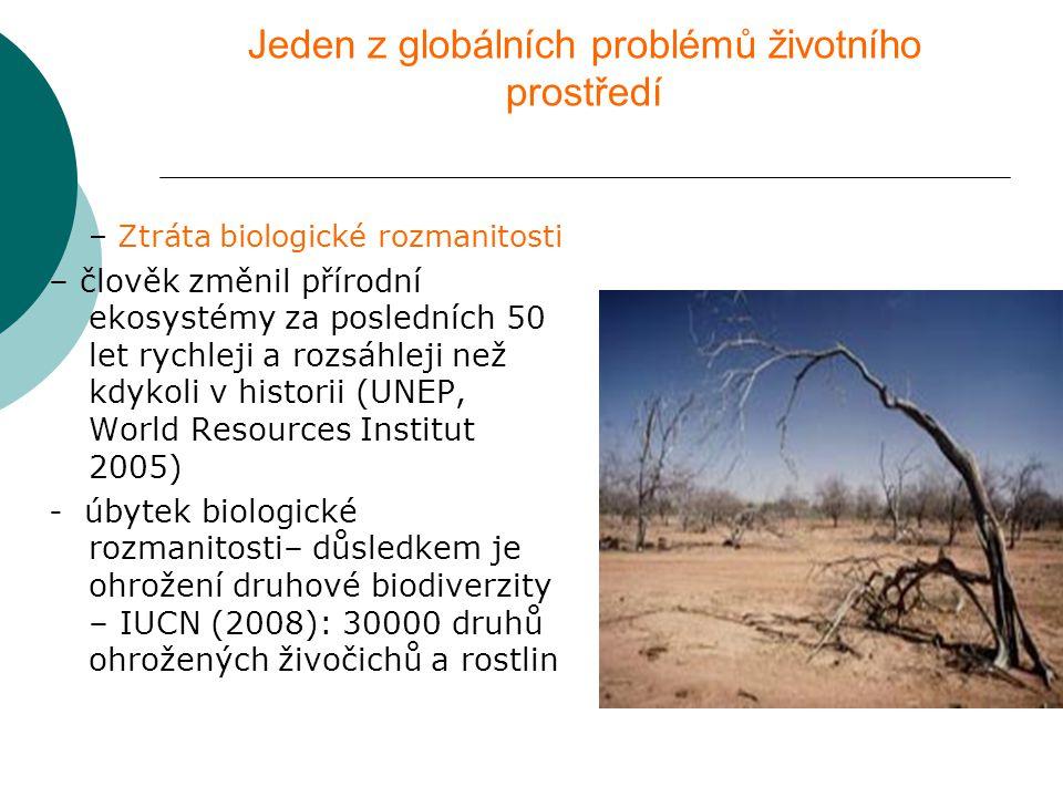 Jeden z globálních problémů životního prostředí