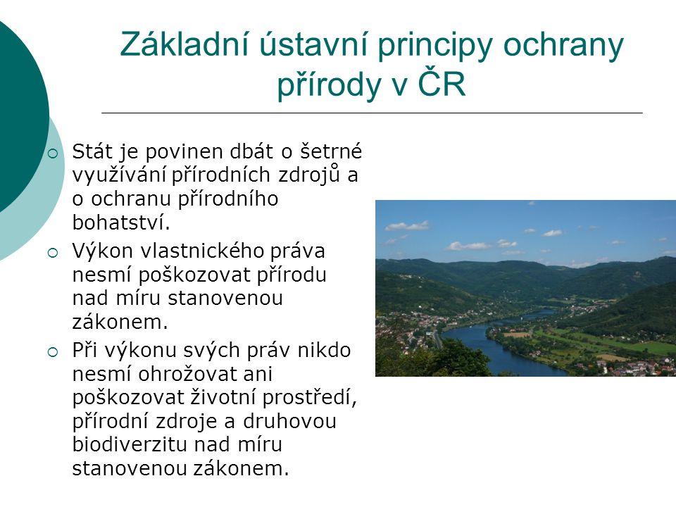 Základní ústavní principy ochrany přírody v ČR