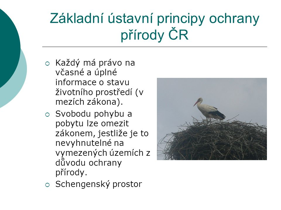 Základní ústavní principy ochrany přírody ČR