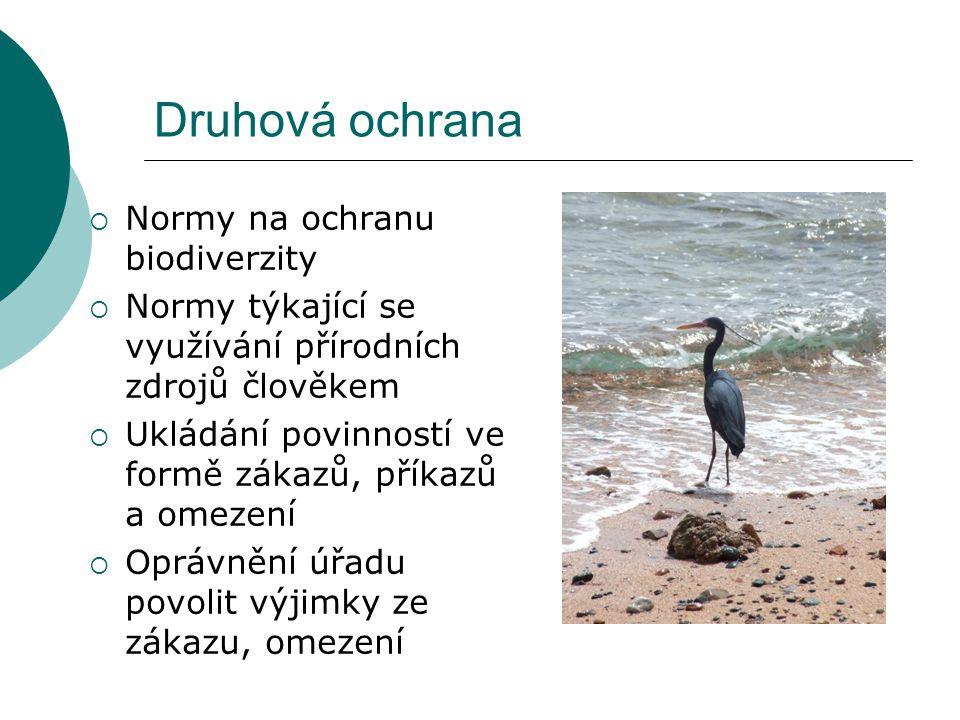 Druhová ochrana Normy na ochranu biodiverzity