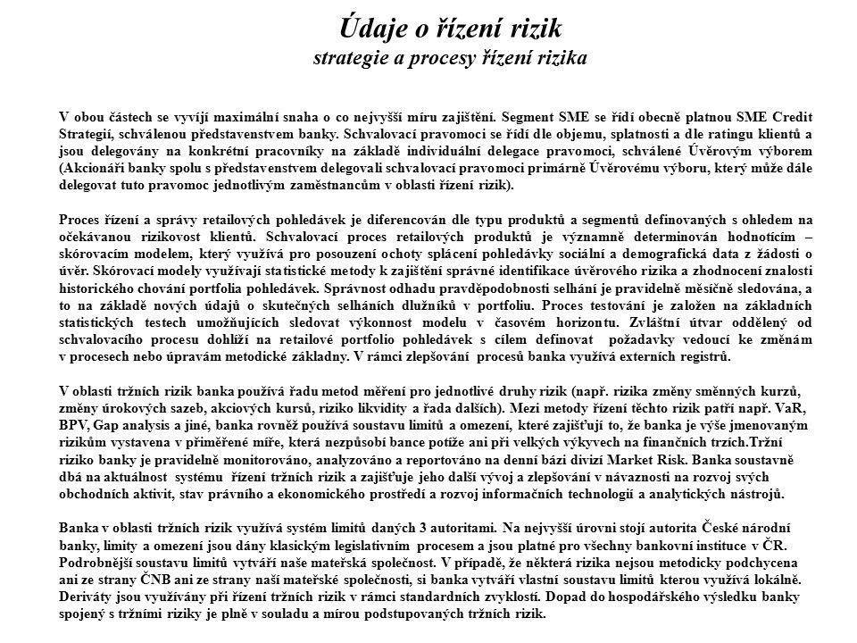 Údaje o řízení rizik strategie a procesy řízení rizika