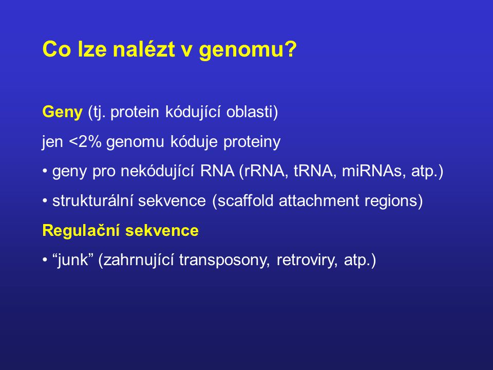 Co lze nalézt v genomu Geny (tj. protein kódující oblasti)