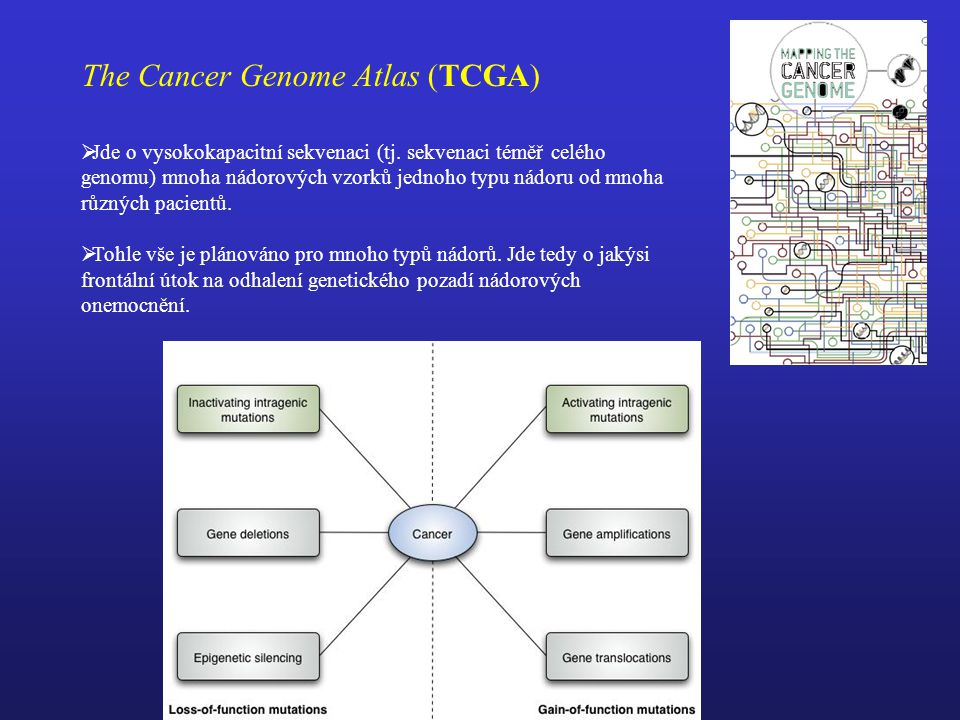 The Cancer Genome Atlas (TCGA)