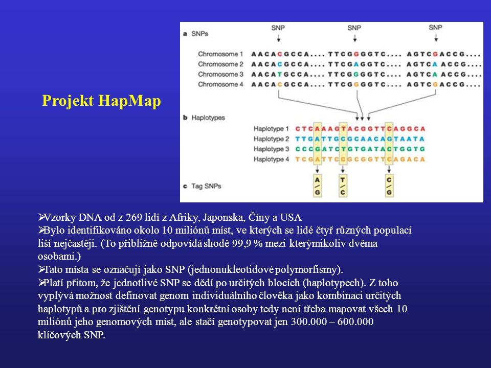 Projekt HapMap Vzorky DNA od z 269 lidí z Afriky, Japonska, Číny a USA