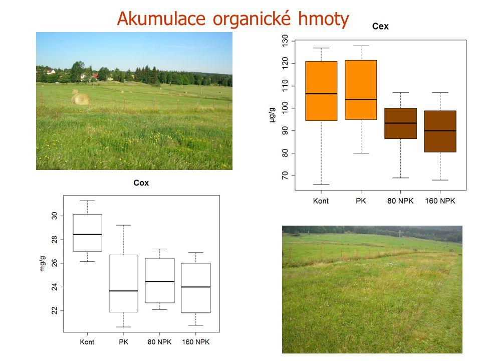 Akumulace organické hmoty