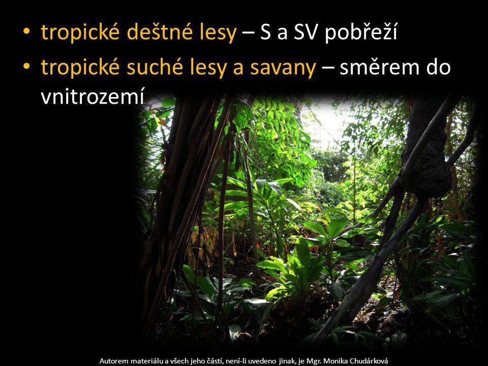 tropické deštné lesy – S a SV pobřeží