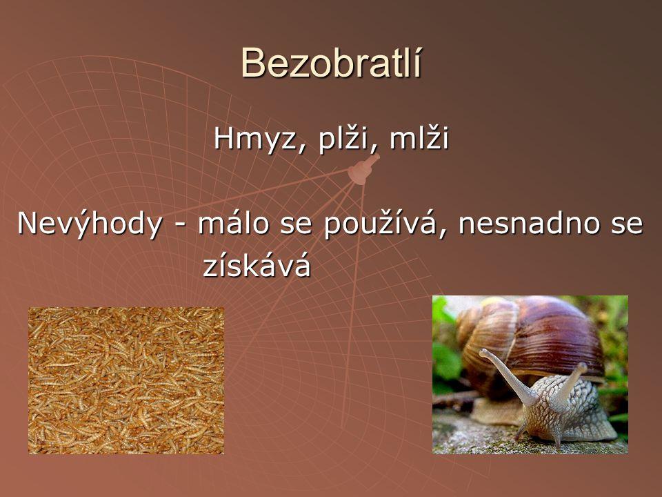 Hmyz, plži, mlži Nevýhody - málo se používá, nesnadno se získává