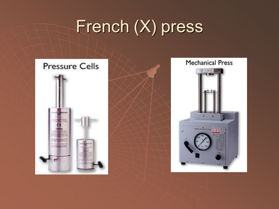 French (X) press