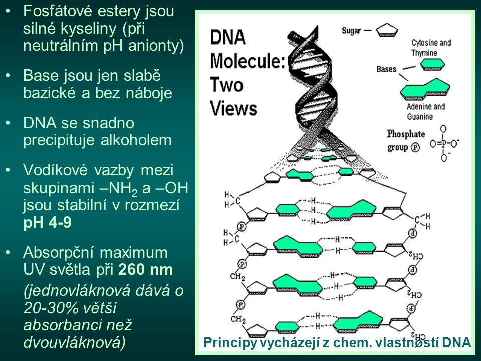 Fosfátové estery jsou silné kyseliny (při neutrálním pH anionty)