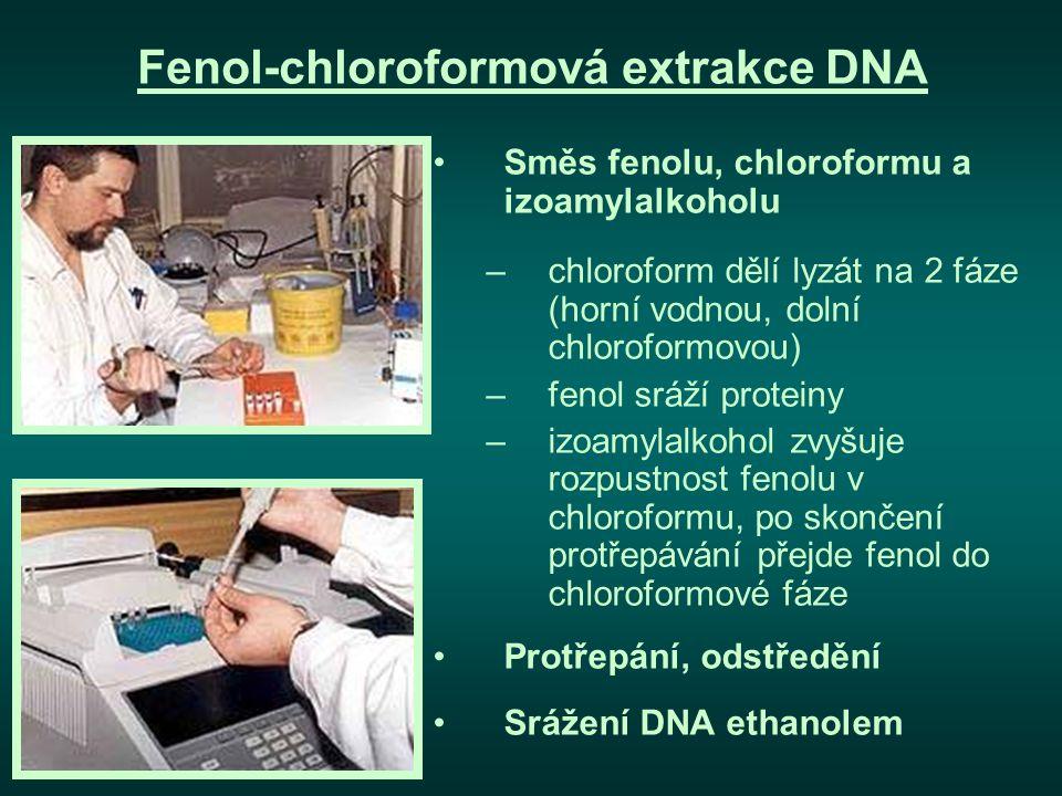 Fenol-chloroformová extrakce DNA
