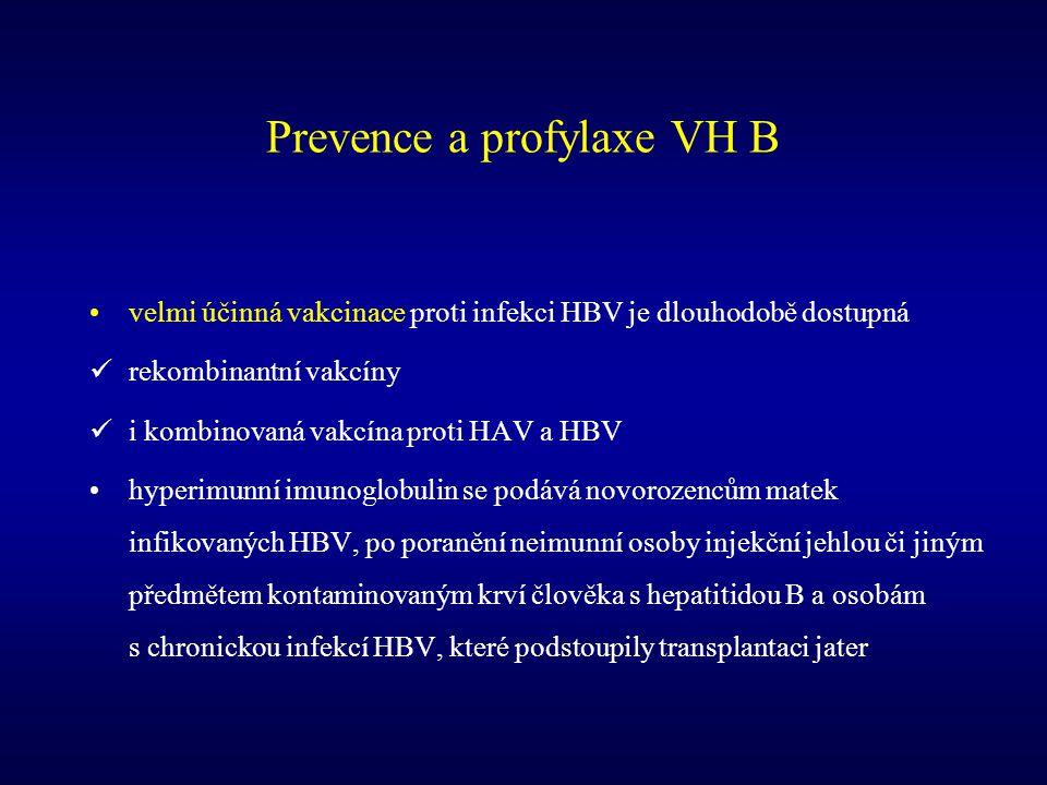 Prevence a profylaxe VH B
