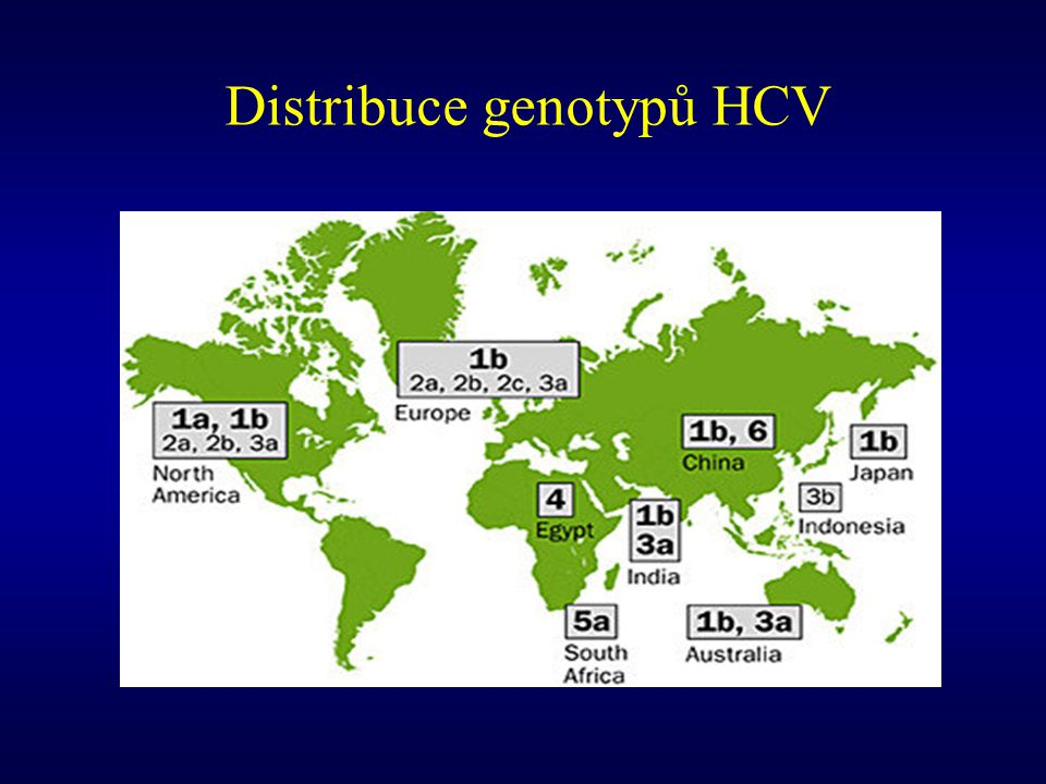 Distribuce genotypů HCV