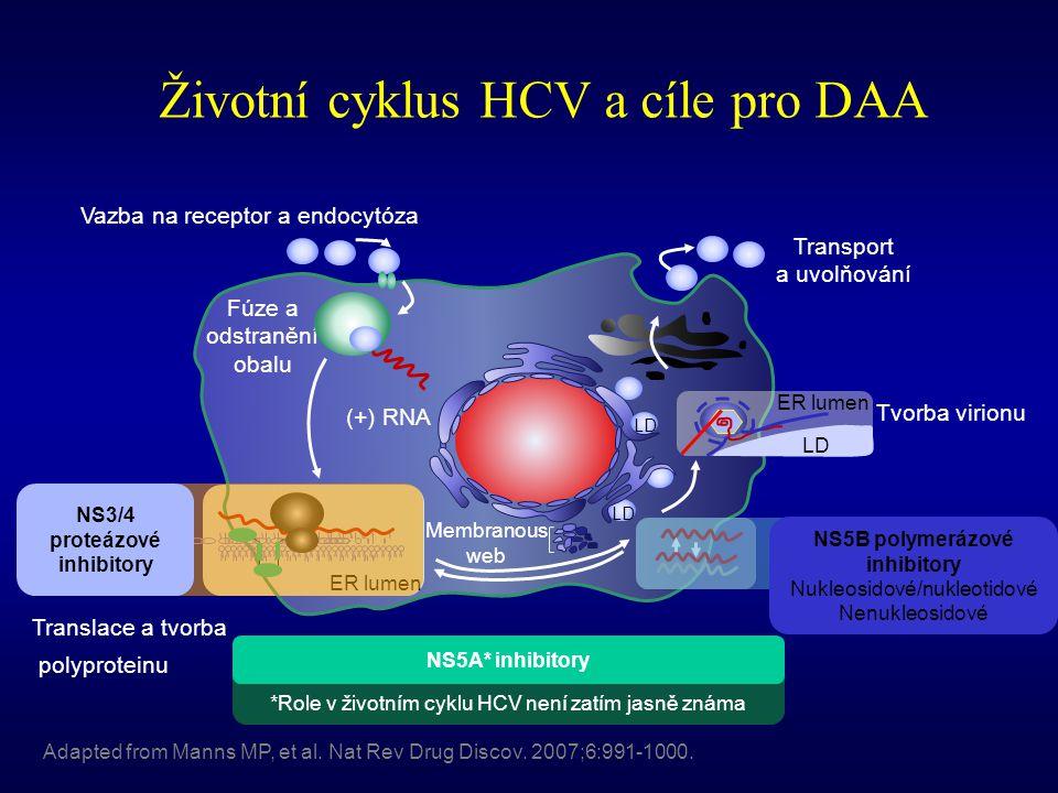 Životní cyklus HCV a cíle pro DAA