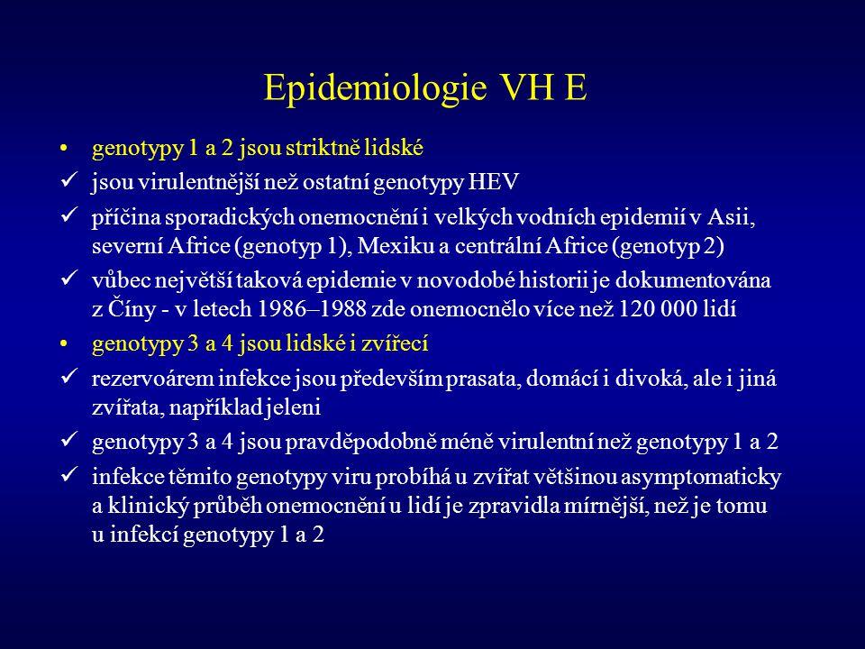 Epidemiologie VH E genotypy 1 a 2 jsou striktně lidské