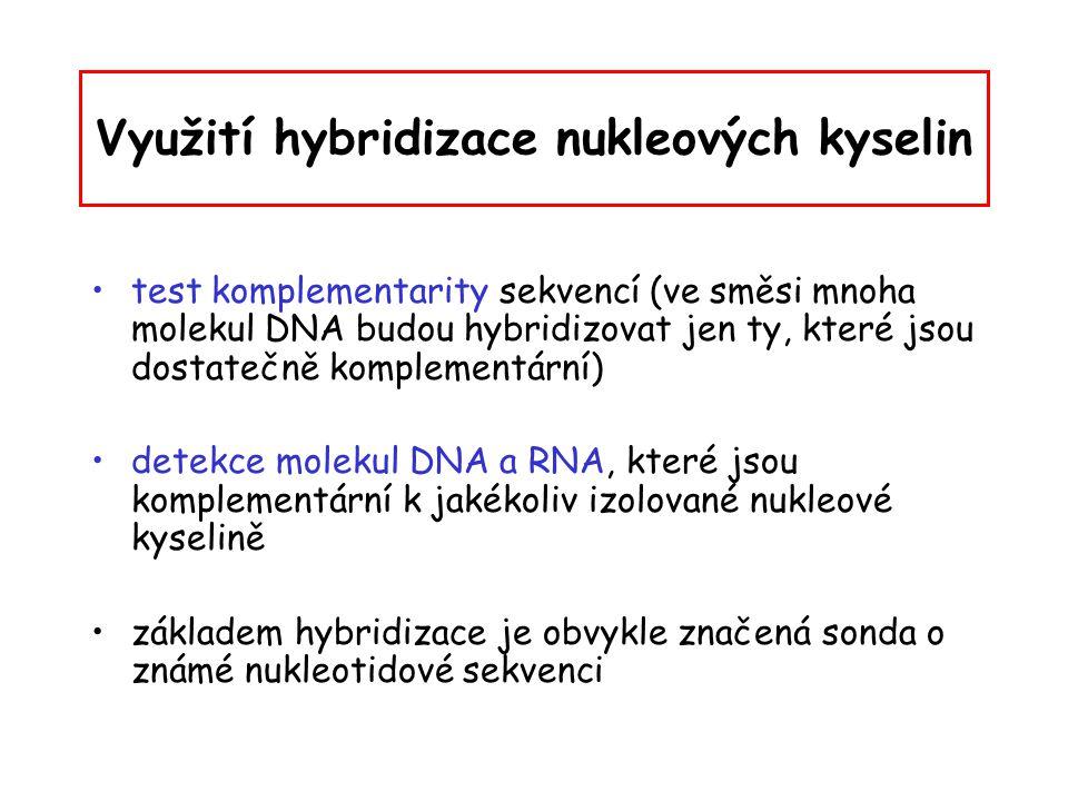 Využití hybridizace nukleových kyselin