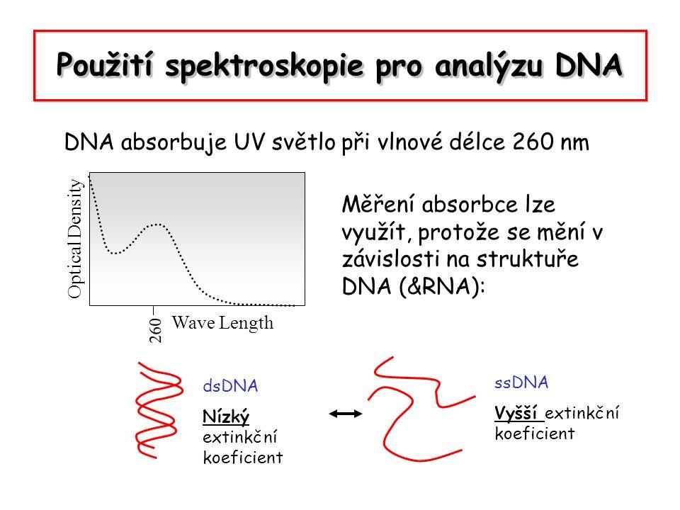 Použití spektroskopie pro analýzu DNA