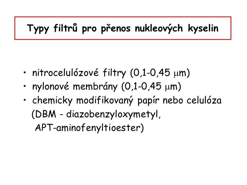 Typy filtrů pro přenos nukleových kyselin