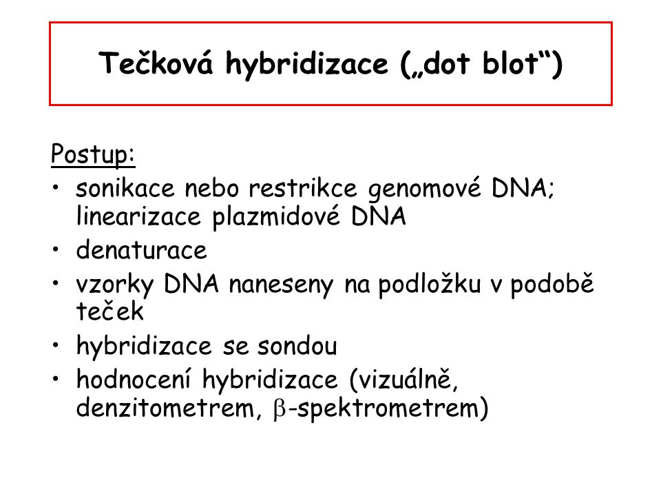 """Tečková hybridizace (""""dot blot )"""