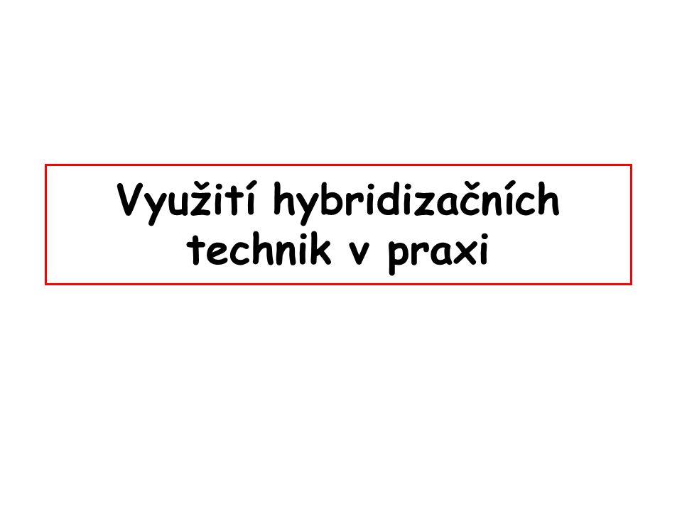 Využití hybridizačních technik v praxi