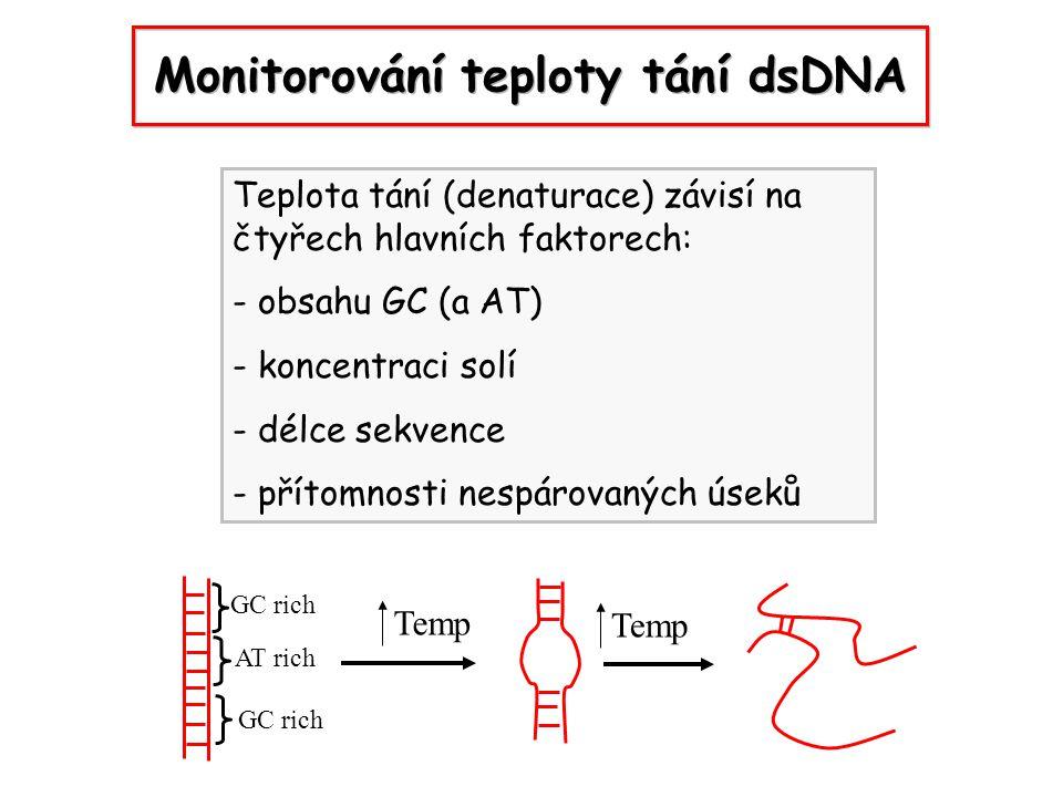 Monitorování teploty tání dsDNA