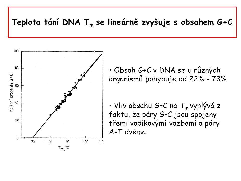 Teplota tání DNA Tm se lineárně zvyšuje s obsahem G+C