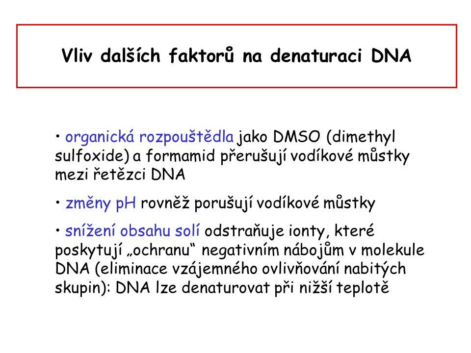 Vliv dalších faktorů na denaturaci DNA