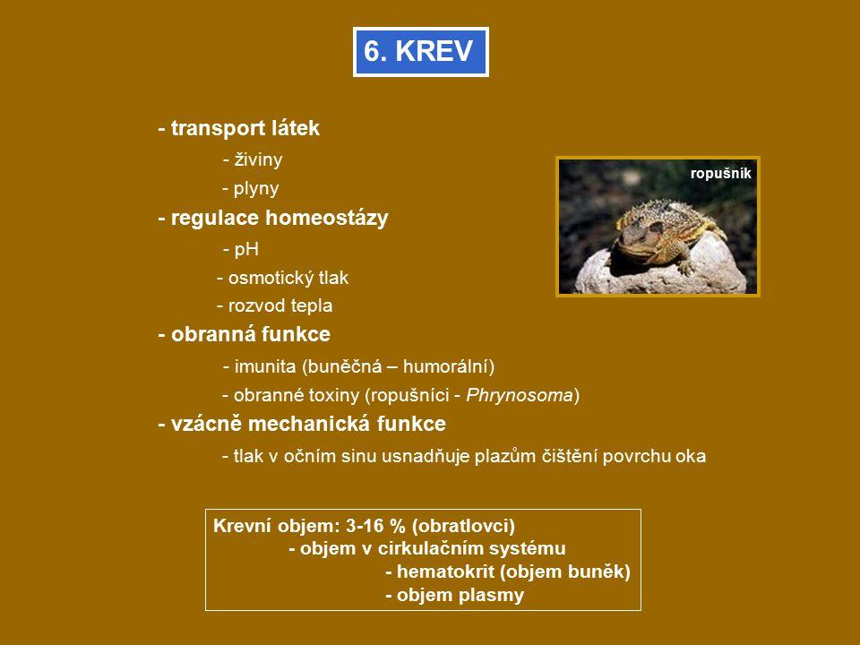 6. KREV - transport látek - živiny - regulace homeostázy - pH