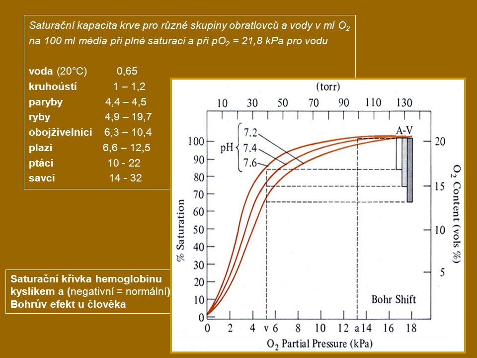 Saturační kapacita krve pro různé skupiny obratlovců a vody v ml O2