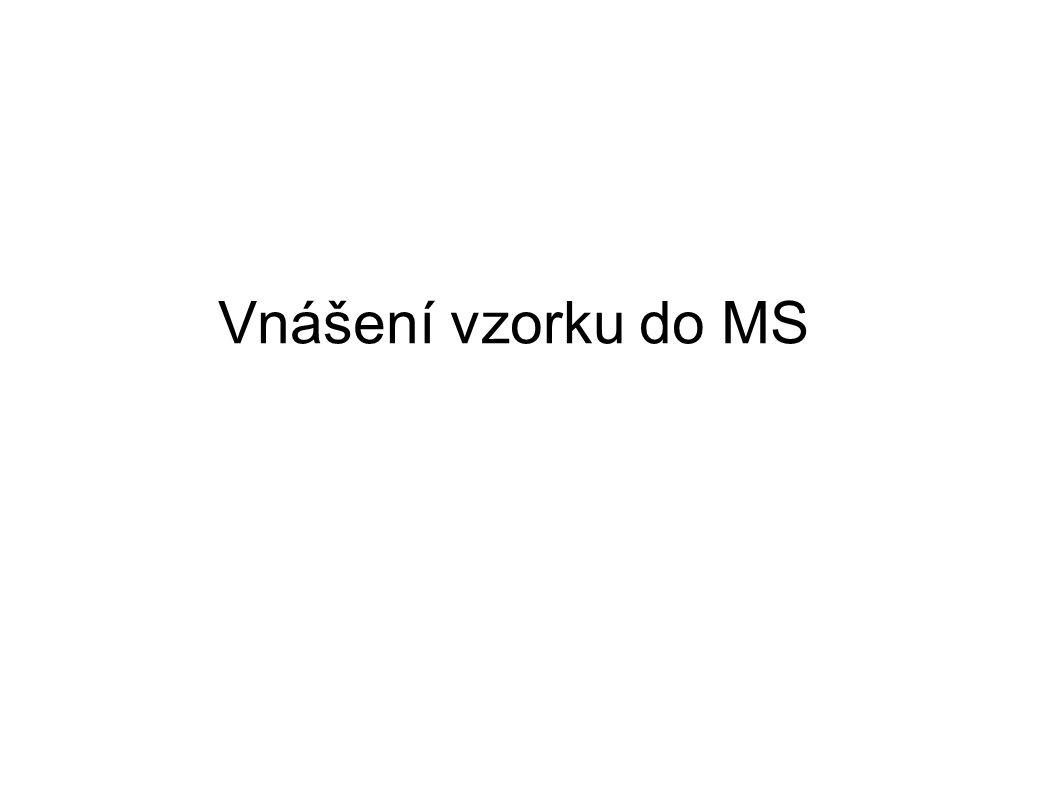Vnášení vzorku do MS