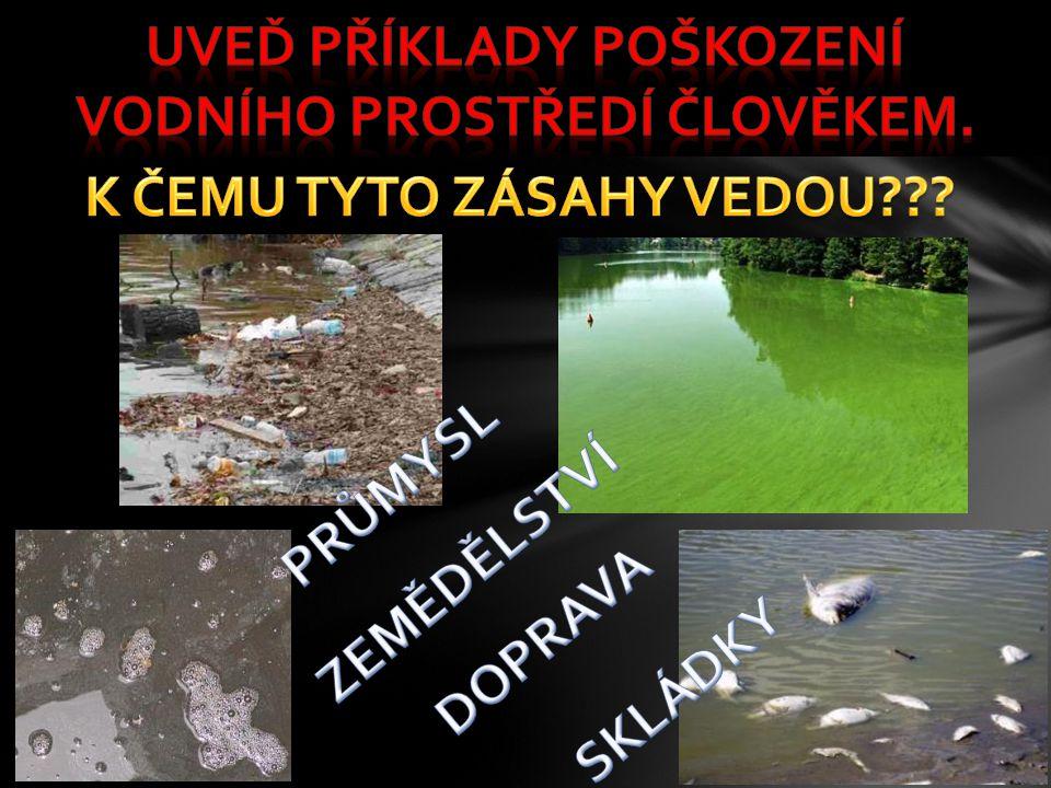 Uveď příklady poškození vodního prostředí člověkem.