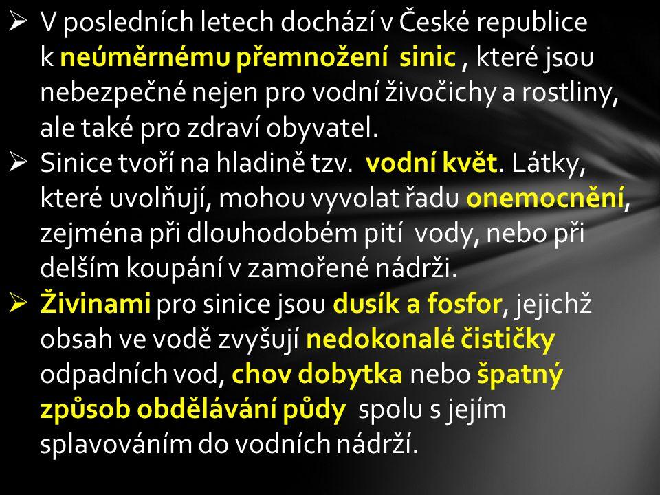 V posledních letech dochází v České republice k neúměrnému přemnožení sinic , které jsou nebezpečné nejen pro vodní živočichy a rostliny, ale také pro zdraví obyvatel.