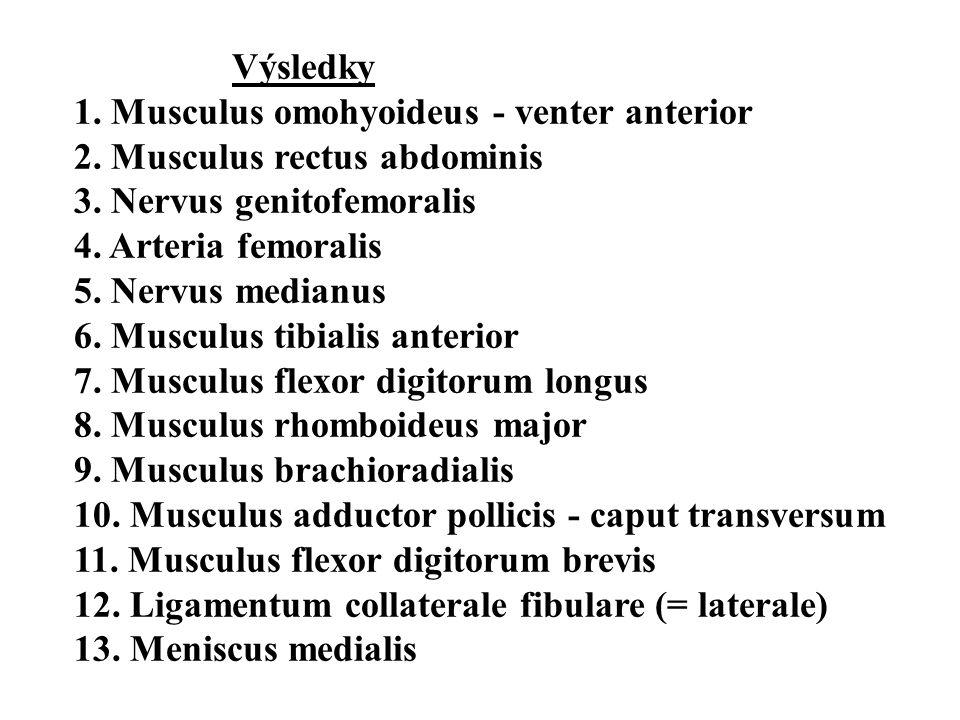 Výsledky 1. Musculus omohyoideus - venter anterior. 2. Musculus rectus abdominis. 3. Nervus genitofemoralis.