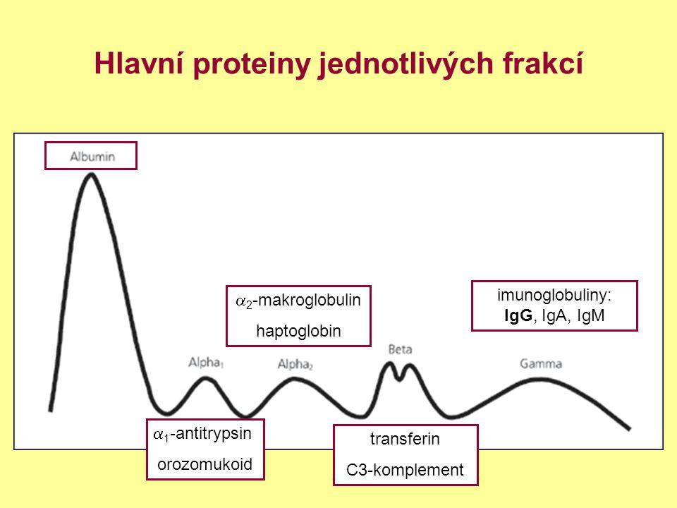 Hlavní proteiny jednotlivých frakcí